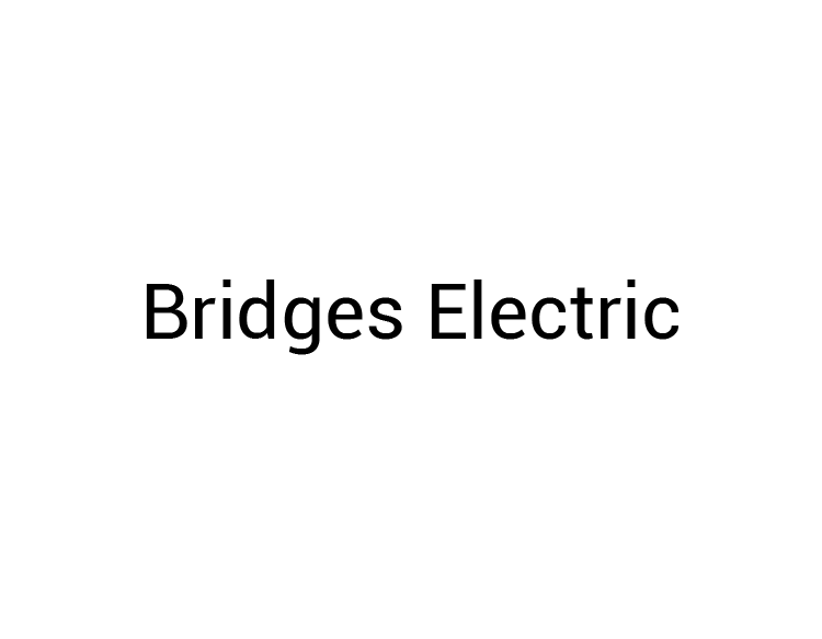 Birdges Electric